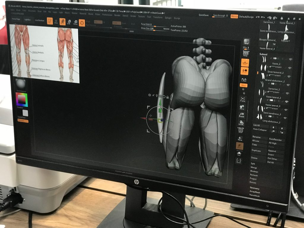 Morphologie en 3D