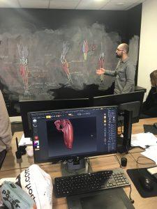 Cours de Morphologie : la jambe